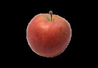 リンゴ(りんご・青りんご・林檎・apple)無料画像