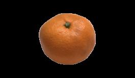 みかん(ミカン・オレンジ・蜜柑・orange)無料画像
