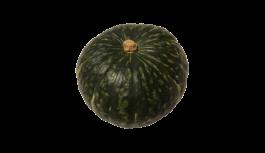 かぼちゃ(カボチャ・南瓜・パンプキン・pumpkin)無料画像