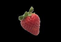 いちご(イチゴ・苺・ストロベリー・strawberry)無料画像