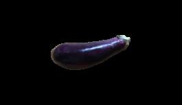 なすび(なす・ナス・茄子・eggplant)無料画像