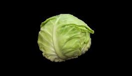 キャベツ(きゃべつ・紫キャベツ・cabbage)無料画像