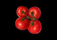 トマト(とまと・ミニトマト・tomato)無料画像page2